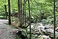 Slovenia IMG 7138 (19638939521).jpg