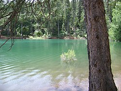 Jenkinson Lake near Pollock Pines
