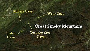 Wear Cove - Coves of the northeast Great Smoky Mountains