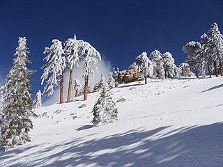 Snow Valley Mountain Resort ski resort in Running Springs, California, United States