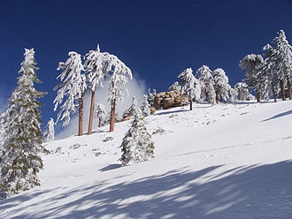 Snow Valley Mountain Resort - Image: Snow Valley CA 2010 1