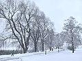 Snowing in Hesperiapark - Marit Henriksson.jpg