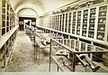 Sommer, Giorgio (1834-1914) - n. 10802 - Museo di Pompei.jpg