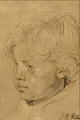 Son of the Artist - Sir Peter Paul Rubens.png