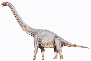 Sonorasaurus thompsoni.jpg