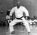 Sosui Ichikawa 4.jpg