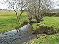 Spallander Burn - geograph.org.uk - 771301.jpg