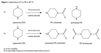 Piperazine - Piperazine (PZ) reacts with carbon dioxide to produce PZ carbamate and PZ bicarbamate at low loading and operating range, respectively.