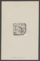 Spirifer disjunctus - - Print - Iconographia Zoologica - Special Collections University of Amsterdam - UBAINV0274 005 13 0010.tif