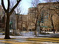 Spring Thaw Interior Square.JPG