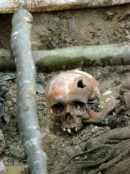 The skull of a victim of the July 1995 Srebrenica massacre in an exhumed mass grave outside of Potocari, 2007 Srebrenica Massacre - Massacre Victim 2 - Potocari 2007.jpg