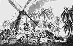 Sugar production in the Danish West Indies - Sugar mill in Saint Croix