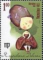 Stamp of Ukraine s887.jpg