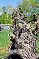 Stan Winston Creature Parade (8677922943).jpg