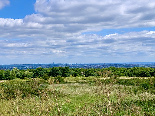 Stanmore Country Park, Wood Farm Viewpoint, London View 1