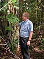Starr 050415-0046 Schefflera actinophylla.jpg