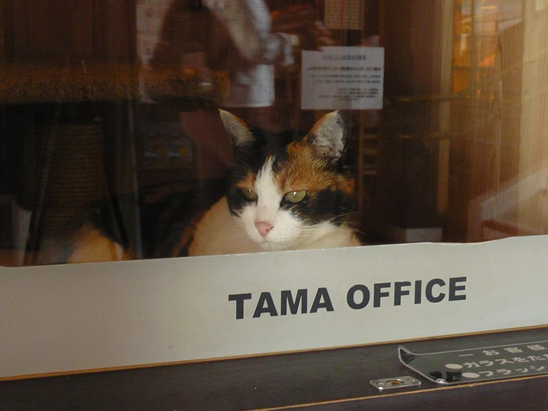 File:Stationmaster Tama 20110715.jpg
