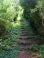 Steps, Homelands Pit Farm - geograph.org.uk - 508516.jpg