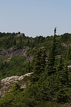 Stillaguamish Peak 5532.JPG