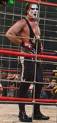 Man wearing black tights with black and white facepaint standing in a ring surrounded by a steel cage.