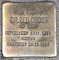 Stolperstein Martin-Luther-Str 65 (Schön) Leo Gross.jpg