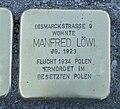 Stolperstein für Manfred Löwi, Karl-Liebknecht-Straße, Chemnitz.JPG