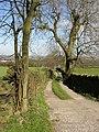 Stony Lane, Southowram - geograph.org.uk - 399909.jpg