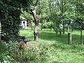 Storey's Garden 6741.JPG