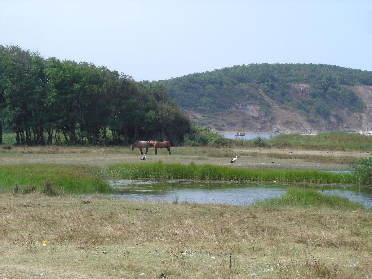 Strandzha Nature Park Bulgaria