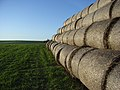 Straw bales, Childrey - geograph.org.uk - 313860.jpg