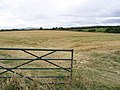 Stubble field near Thirston New Houses - geograph.org.uk - 547459.jpg