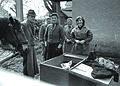 Svinjski sejem na Ptuju 1964.jpg