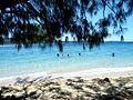 Swimming - panoramio.jpg