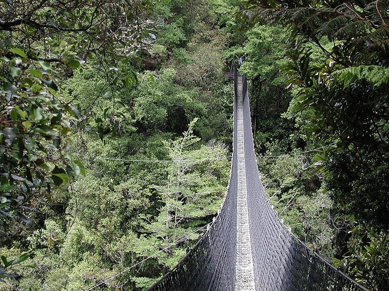 File:Swing bridge over Waiohine River.jpg