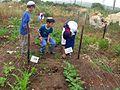 Tal Menashe - students in the garden.JPG