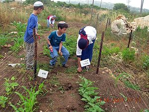 Tal_Menashe_-_students_in_the_garden