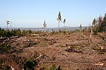 Teindland Forest A clear-felled area in the middle of the forest. In the distance there is a glimpse of Fochabers, and the highest point on the skyline is the Bin of Cullen.