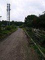 Telecommunications Mast, Rough Common - geograph.org.uk - 534399.jpg