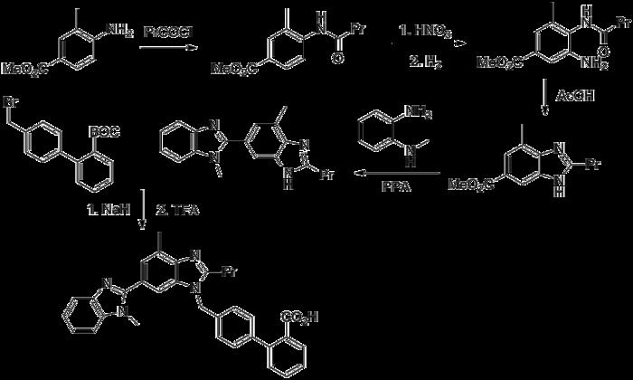 Ivermectin thomas borody