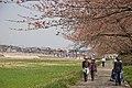Tenshochi Park, Kitakami (2446542549).jpg