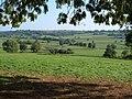 The Otter valley near Ullcombe - geograph.org.uk - 245429.jpg