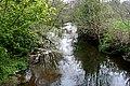 The River Inny from Bealsmill Bridge - geograph.org.uk - 418914.jpg