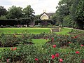 The Rose Garden, Pembroke Lodge, Richmond Park - geograph.org.uk - 1426827.jpg
