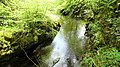 The Soldier's Pool, Crawick Water and glen, Dumfries and Galloway.jpg