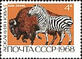 The Soviet Union 1968 CPA 3677 stamp (American Bison and Zebra (Askania-Nova)).jpg