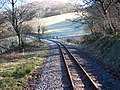 The Vale of Rheidol Railway - geograph.org.uk - 696315.jpg