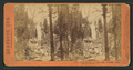 The Vernal Fall, 350 feet high, Yo-Semite Valley, Mariposa County, by Lawrence & Houseworth 2.png