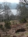 The north banks of Loch Tummel - geograph.org.uk - 1233699.jpg
