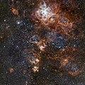 The rich region around the Tarantula Nebula in the Large Magellanic Cloud.jpg