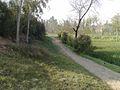 The road towards school.jpg
